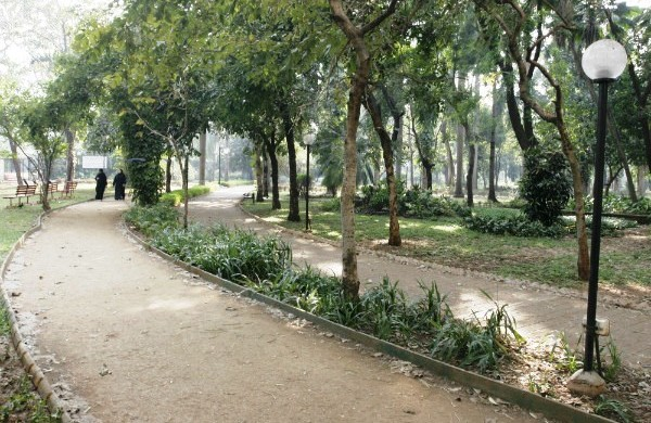 Colaba Woods - Photo Copyright: DNA